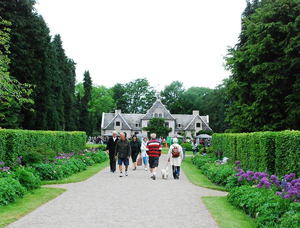 Gröna entreprenörer och Klassiska bilar på Norrvikens trädgårdar 18-19 juli